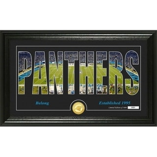 "Carolina Panthers ""Silhouette"" Panoramic Bronze Coin Photo Mint - Multi-color"