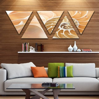 Designart 'Brown Nautilus Shell Pattern' Contemporary Canvas Art Print - Triangle 5 Panels