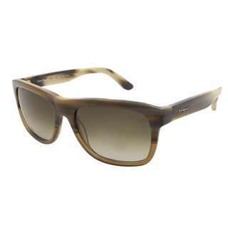 Women's Ferragamo Sunglasses - SF686S / Frame: Brown Cognac Lens: Brown Gradient