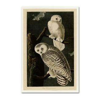 John James Audobon 'Snowy Owl' Canvas Art