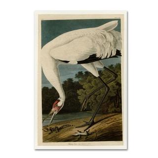 John James Audobon 'Whooping Crane' Canvas Art