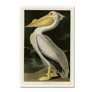 John James Audobon 'American White Pelican' Canvas Art