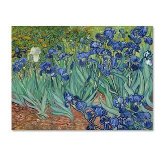 Vincent van Gogh 'Irises 1889' Canvas Art