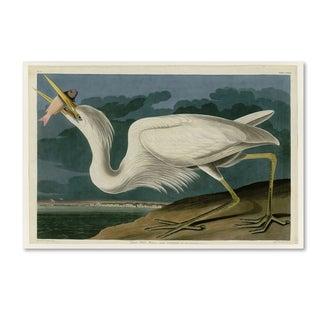 John James Audobon 'Great White Heron' Canvas Art