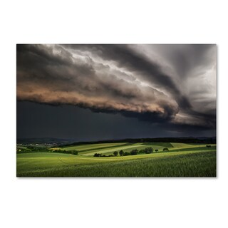 Burger Jochen 'Storm' Canvas Art