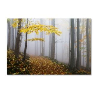 Martin Rak 'Forest Colors' Canvas Art