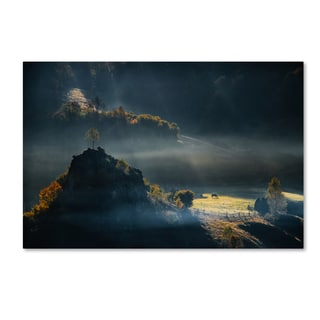 Cristian Lee 'Fundatura Ponorului' Canvas Art