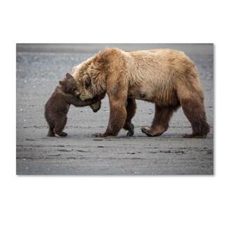 Renee Doyle 'A Little Bear Hug' Canvas Art