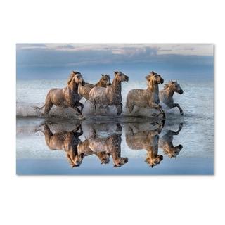 Xavier Ortega 'Horses And Reflection' Canvas Art