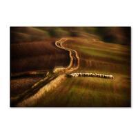 Peter Svoboda 'Crossing The Fields' Canvas Art