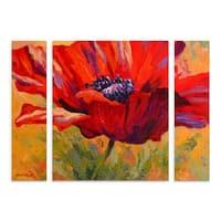 Marion Rose 'Red Poppy II' Multi Panel Art Set
