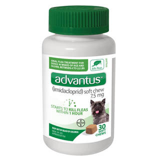 Advantus Soft Chews Flea & Tick Control - Dog