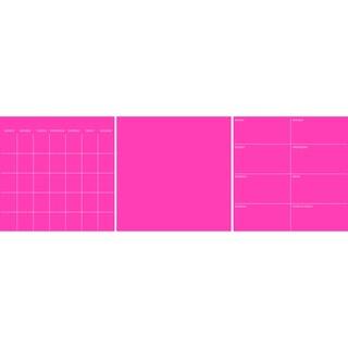 Neon Flamingo Pink 3 Pc Combo Set