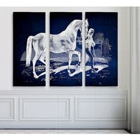 Equine Plate XXII