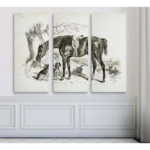 Equine Sketch IV