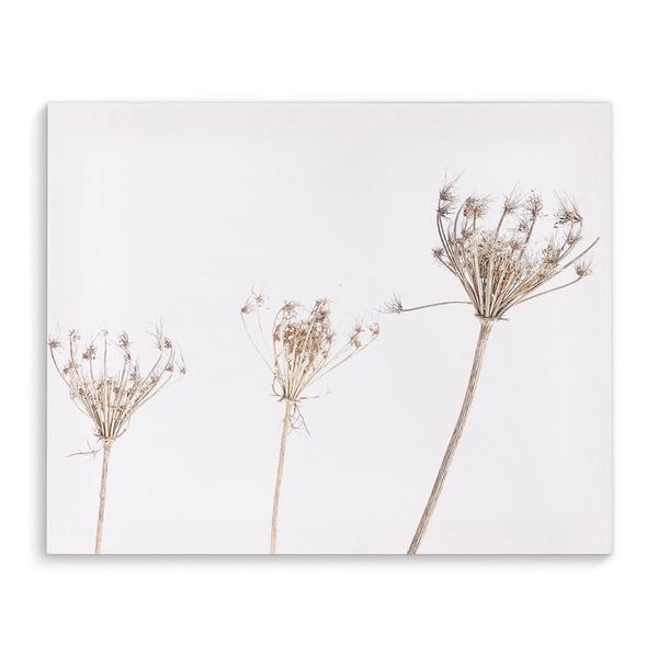 Kavka Designs Still Life Two White/Beige Canvas Art