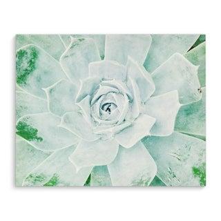 Kavka Designs Green Rose Green Canvas Art