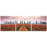 "Elementem Photography: ""Tulips in Tuscany"" Photography Print 3-Panel Panoramic Wall Art"