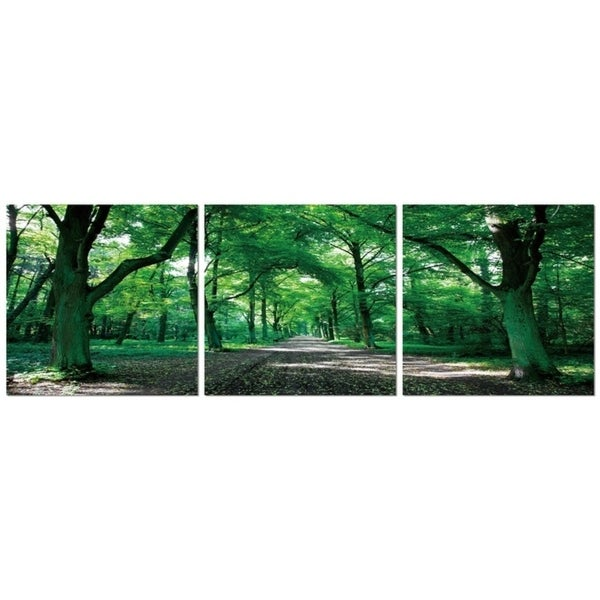 "Elementem Photography: ""Forest Path"" Photography Print 3-Panel Panoramic Wall Art"