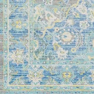 Meighan Vintage Oriental Aqua Area Rug (7'10x10'3)