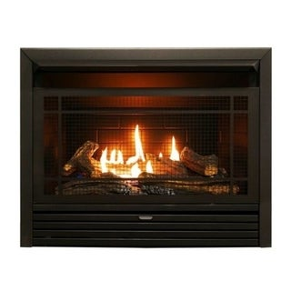 Duluth Forge Dual Fuel Ventless Fireplace Insert - 26,000 BTU, Remote Control