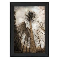 """""""Sky's the Limit"""" By Robin-Lee Vieira, Printed Wall Art, Ready To Hang Framed Poster, Black Frame"""