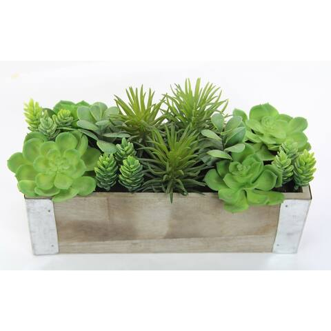 The Gray Barn Jartop Artificial Potted Mixed Succulents Plants with Rectangular Wood Planter, Green