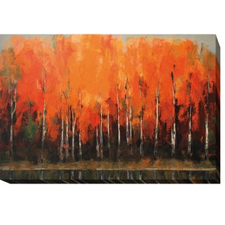 Peter Colbert 'Birch Shoreline' Gallery-wrapped Canvas Giclee Art