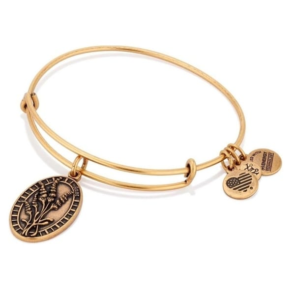 c27924d29 Shop Alex And Ani Aunt Charm Bangle - A16EB62RG - Free Shipping On Orders  Over $45 - Overstock - 17141959