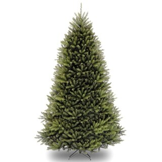 10 ft. Dunhill® Fir Tree
