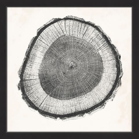 Marmont Hill - Handmade Tree Ring II Framed Print