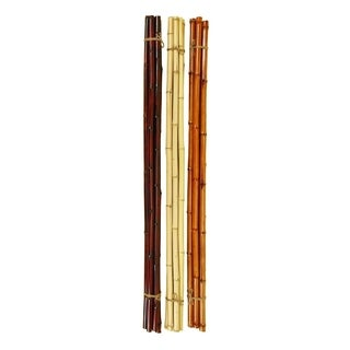 Studio 350 Bamboo Set of 3, 5 Bunch 59 inches L