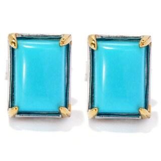 Michael Valitutti Palladium Silver Rectangular Sleeping Beauty Turquoise Stud Earrings - Blue
