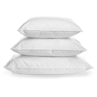 700-Fill, Extra Firm Milkweed Blend Pillow for Healthier Sleeping