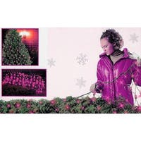 4' x 6' Purple Mini Net Style Christmas Lights - Green Wire
