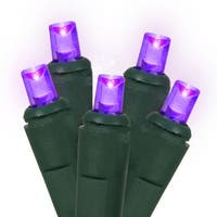 Set of 60 Purple LED Wide Angle Christmas Lights - Green Wire