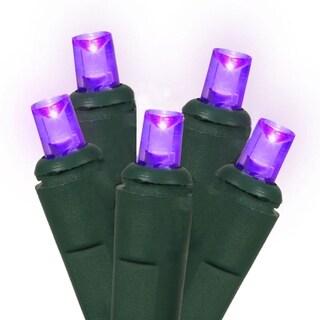 Set of 60 Purple LED Wide Angle Christmas Lights - Green Wire