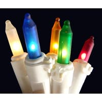 Set of 100 Frosted Multi Color Mini Christmas Lights - White Wire