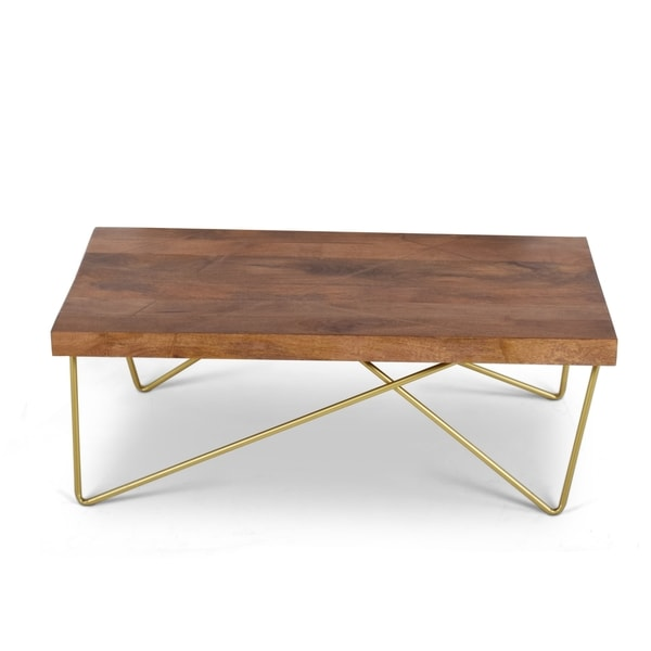 Shop Solid Mango Wood With Brass Inlay Coffee Table By Greyson