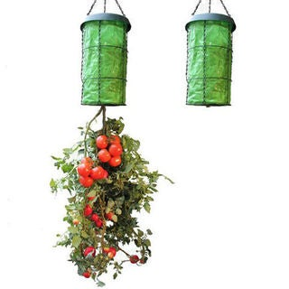 Upside Down Tomato Planter Organic Watering System Vertical Grow Bag As Seen TV