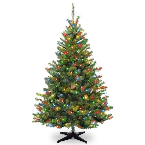 kincaid spruce tree with multicolor lights