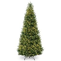 12 ft. Natural Fraser Slim Fir Tree with Clear Lights