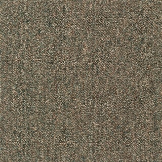 """Mohawk Cutler 24"""" x 24"""" Carpet tile in EARTHED FIELDS. (2 options available)"""