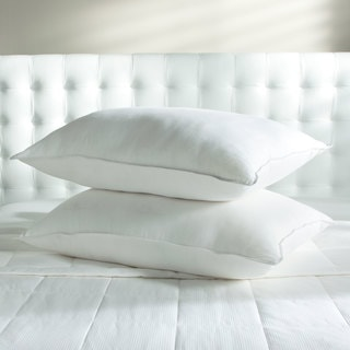 Sealy 600 Fill Power Soft Down Pillow (Set of 2)