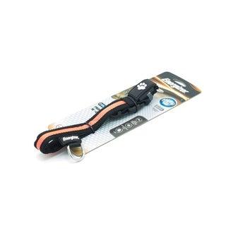 Energizer Ignite LED Dog Collar, Large Orange