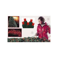 4' x 6' Red Wide Angle LED Net Style Christmas Lights - Green Wire