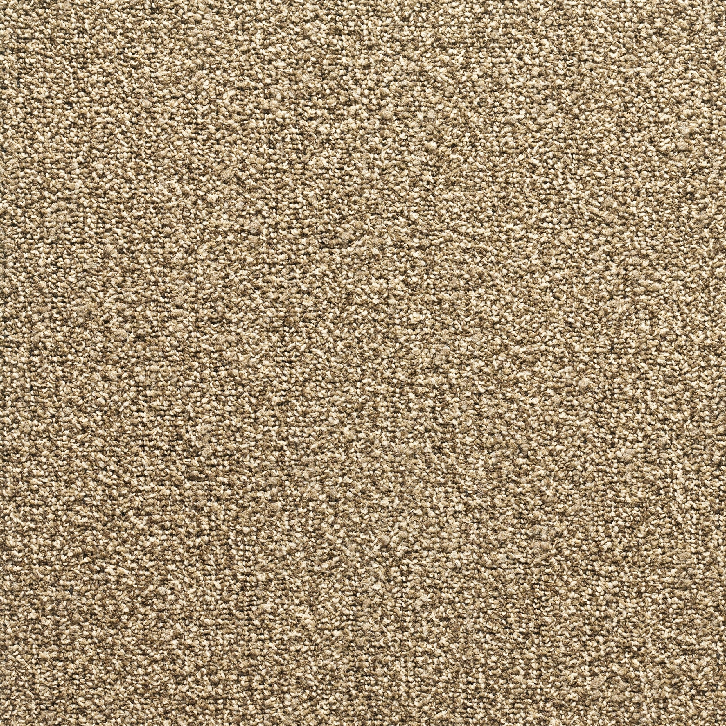 """MOHAWK Conway 24"""" x 24"""" Carpet tile in Bamboo Sprout (Bei..."""