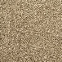 """Mohawk Conway 24"""" x 24"""" Carpet tile in BAMBOO SPROUT"""