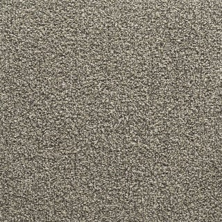 "Mohawk Conway 24"" x 24"" Carpet tile in CHAMELEON MIXER"