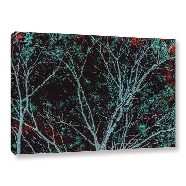 Scott Medwetz's Tree at Midnight, Gallery Wrapped Canvas